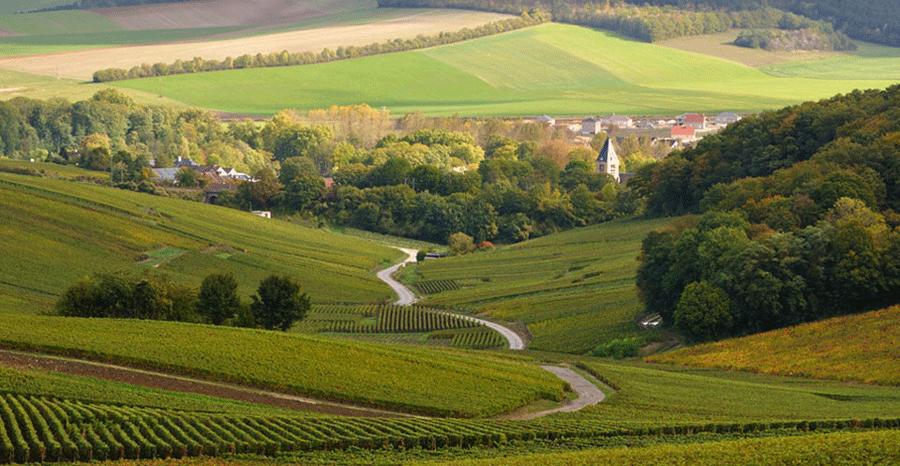 Avenay-val-dor.png