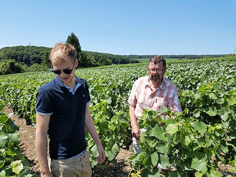 Vincent-et-Bernard-Thieffenat-dans-les-vignes-.png