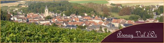 Sur la route des vins : le prestigieux vignoble de Champagne